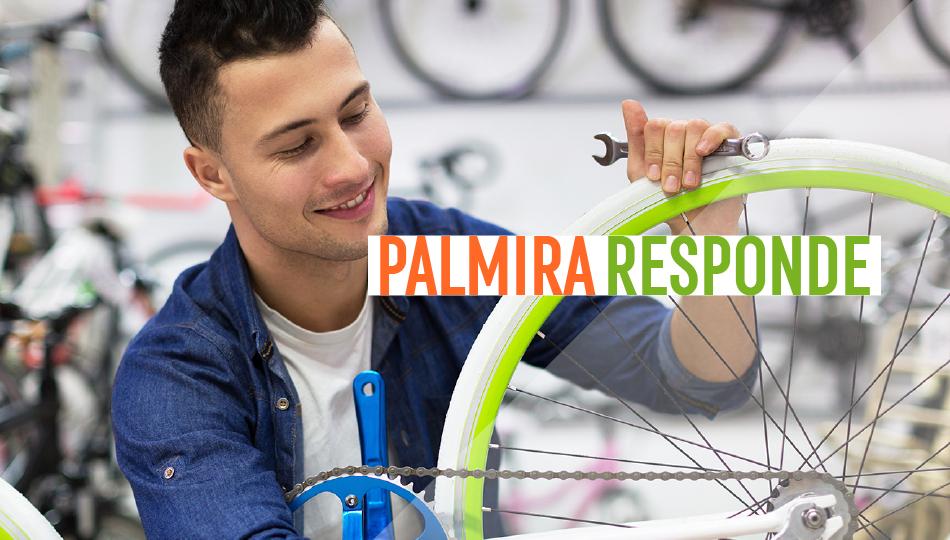 Palmira Responde